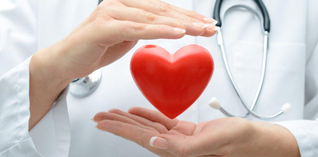 seguro optima salud